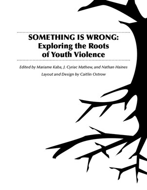 Something iS Wrong: exploring the roots of Youth Violence